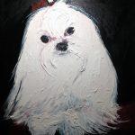 Portraits - Pets